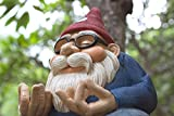 The Ohm Gnome (Big Smiles and Lots of Serenity for Your Home Or Garden) by Twig & Flower