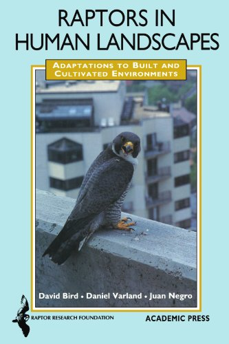 Raptors in Human Landscapes: Adaptations to Built and Cultivated Environments