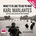 What It Is Like To Go To War Audiobook by Karl Marlantes Narrated by Jeff Harding