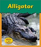 img - for Alligator (Zoo Animals) book / textbook / text book