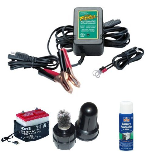 Cold Weather Car Battery Protectant Bundle (Car Battery Cold Weather compare prices)