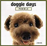 img - for Doggie Days: Poodle 2005 Calendar (Doggie Days) book / textbook / text book