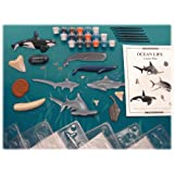 Skullduggery Hands On Classroom Science Kit, Eyewitness Ocean Life