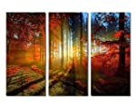 Canvas Wall Art Prints - Red Forest P...