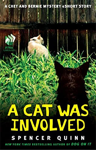 book cover of A Cat Was Involved
