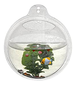 Hanging beta fish bowl wrapables fish bubble for Acrylic fish bowl