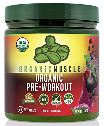 USDA Certified Organic Pre-Workout Supplement - Natural Pre Workout & Organic Energy Drink- Vegan, Paleo, Gluten Free, Non-GMO -- Berry Flavor, 25 serv. (Organic Bcaa compare prices)