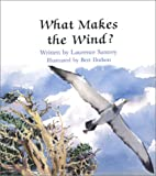 What Makes the Wind