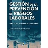 Gestión De La Prevención De Riesgos Laborales.