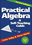 img - for Practical Algebra: A Self-Teaching Guide, Second Edition 2nd edition by Selby, Peter H., Slavin, Steve (1991) Paperback book / textbook / text book