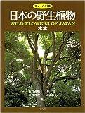 日本の野生植物—木本