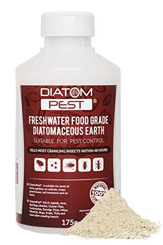 diatompestr-terre-de-diatomee-175g-categorie-insecticide-diatomaceous-earth
