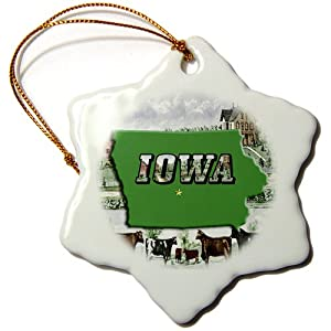 3dRose orn_55428_1 State Map, Picture Text and Farm Background of Iowa-Snowflake Ornament, Porcelain, 3-Inch