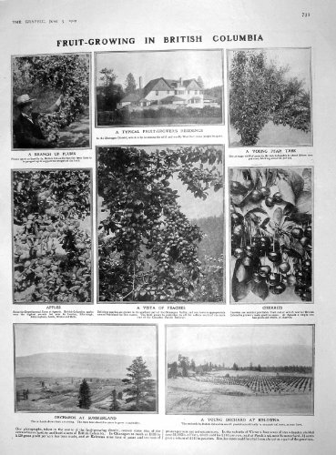 1909 FRUIT GROWING COLUMBIA KELOWNA HAMILTON MALTA