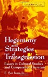 img - for Hegemony and Strategies of Transgression: Essays in Cultural Studies & Comparative Literatur (Suny Series, Postmodern Culture) book / textbook / text book