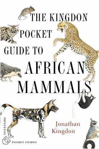 Giraffe  Mammal  African Mammals Guide