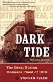 Dark Tide: The Great Boston Molasses Flood of 1919 (0807050202) by Stephen Puleo