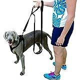 Dog Leash Dual Handled Black Nylon Dog Leashs 8ft Extra Long Large Dog Leash Soft Padded Handles One Inch Wide - 1 Dog 2 Handles