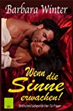 img - for Wenn die Sinne erwachen - (Teil 1), erotischer, historischer Roman (German Edition) book / textbook / text book