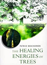 The Healing Energies of Trees