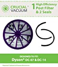 Dyson DC07 DC14 Post-Motor HEPA Filter Plus Gasket Seals Fits ALL Dyson DC07, DC14 models, Compare to Part # 901420-02, Designed & Engineered By Crucial Vacuum