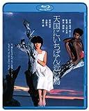 天国にいちばん近い島  ブルーレイ [Blu-ray]