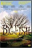 Fullmovies.com – #1 Affiliate Program for Movie Downloads  Big Fish