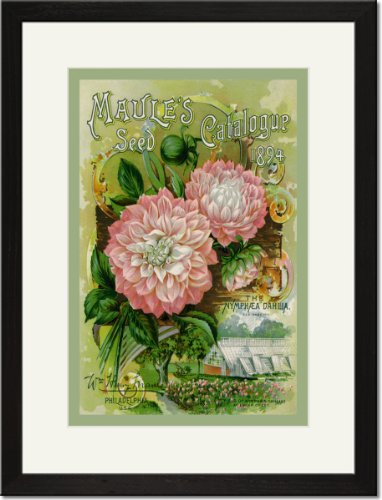 Black Framed/Matted Print 17x23, Maule's Seed Catalogue, 1894