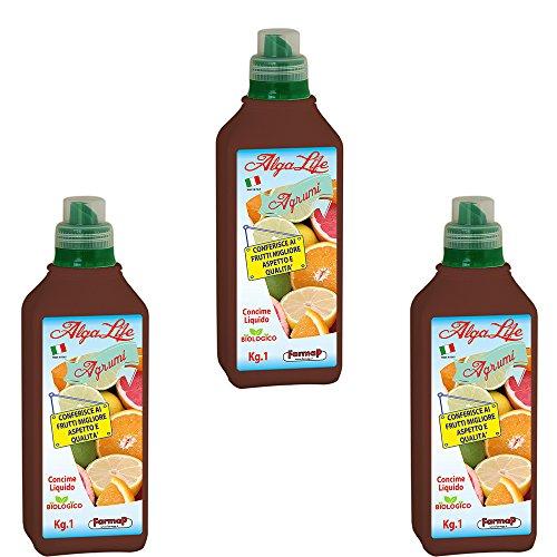 3x-special-organic-liquid-plant-fertilizer-seaweed-all-citrus-trees-plants-1-lt
