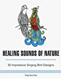 img - for Healing Sounds Of Nature: 30 Impressive Singing Bird Designs (coloring book, animal pattern, bird patterns) book / textbook / text book