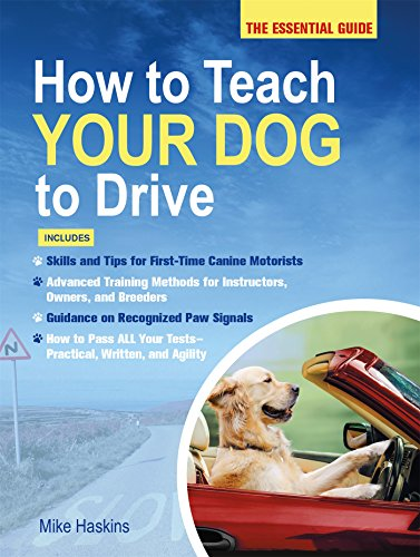How to Teach Your Dog to Drive: The Essential Guide