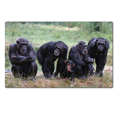 Luxlady Large TableMats When Monkey s Go Bad IMAGE ID 221188