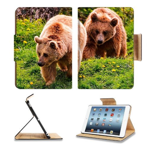 Bears Timber Couple Walking Flowers Summer Apple Ipad Mini Flip Case Stand Smart Magnetic Cover Open Ports Customized Made To Order Support Ready Premium Deluxe Pu Leather 8 Inch (205Mm) X 5 1/2 Inch (140Mm) X 11/16 Inch (17Mm) Liil Ipad Mini Professional front-950046