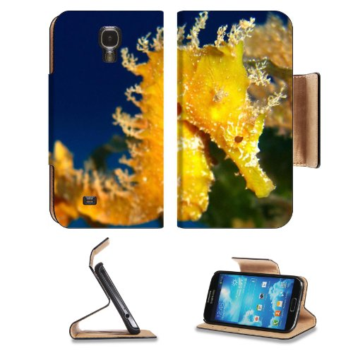 Seahorse Hippocampus Marine Creature Fish Samsung Galaxy S4 Flip Cover Case With Card Holder Customized Made To Order Support Ready Premium Deluxe Pu Leather 5 Inch (140Mm) X 3 1/4 Inch (80Mm) X 9/16 Inch (14Mm) Luxlady S Iv S 4 Professional Cases Accesso