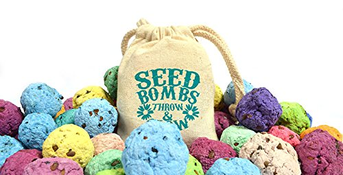 Bloomin Wildflower Seed Bomb Bags (6 seed bombs per bag, 3 bags per pack) (Bag Of Corn Seed compare prices)