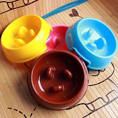 Zcl Plastic Brake-Fast Pet Food Slow Feed Bowl For Dogs Cats (Assorted Color,22 X 22 X 6Cm) , Blue