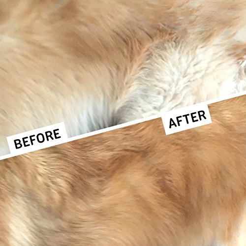 Dematting Comb For Cats Reviews