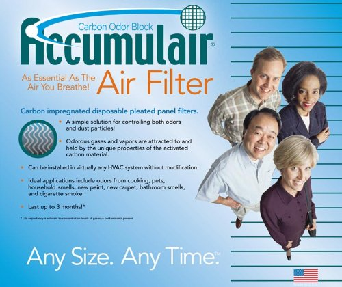 Cheap 20x20x2 Totaline Carbon Replacement Filter (B000QSMY0U)