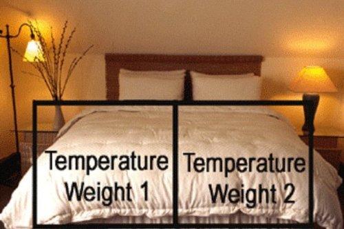 Organic Cotton Comforters