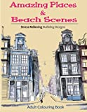 img - for Amazing Places and Beach Scenes: An Adult Coloring Book of Fantastic Cities of the World book / textbook / text book