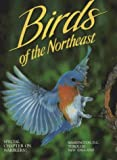 Birds of the Northeast: Washington, D.C. Through New England