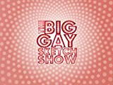 The Big Gay Sketch Show Season 1