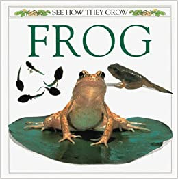 Amazon.com: See How They Grow: Frog (9780789476562 ...