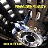 Duck in the Box by Flower Flesh