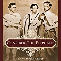 Consider the Elephant Audiobook by Aram Schefrin Narrated by Aram Schefrin