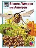 Was ist was, Band 019: Bienen, Wespen und Ameisen title=