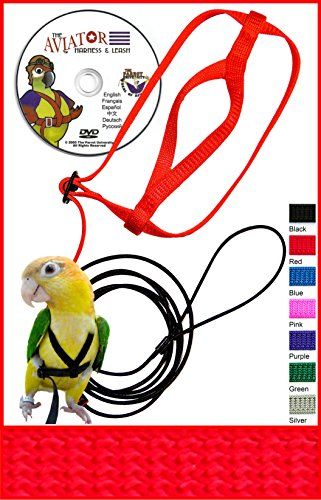 The AVIATOR Pet Bird Harness and Leash: Medium Red Made in America (Bird Harness Medium compare prices)