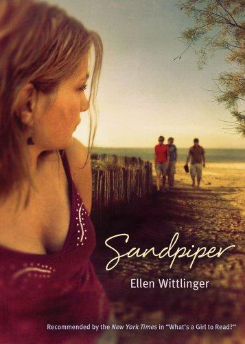 Image of Sandpiper