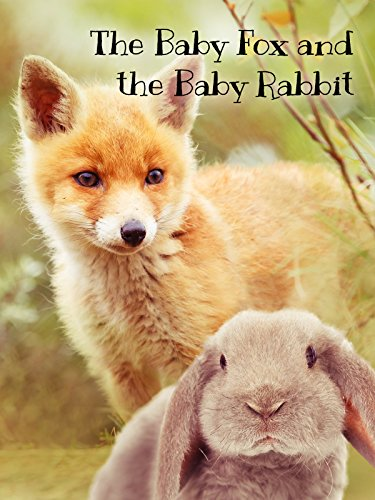 The Baby Fox & The Baby Rabbit