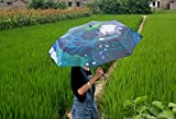 Us TOP New Japanese Anime Umbrella Sunny Umbrella My Neighbor Totoro Lovely Manually Clear Umbrella Telescopic Umbrella Uv Protection